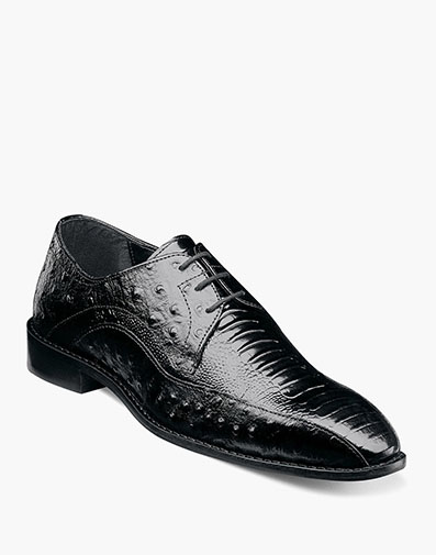Trevi  in Black for $69.90